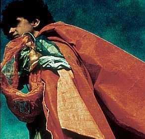 Caetano Veloso vestindo um Parangolé
